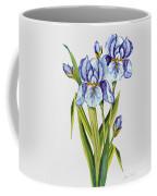 Floral Botanicals-jp3786 Coffee Mug