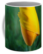 Floral Poppy Flower Poppies Art Prints Giclee Baslee Troutman Coffee Mug