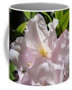 Floral Rhdodendron Flower Art Print Pink Sunlit Rhodies Baslee Coffee Mug