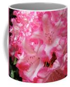 Floral Rhodies Flowers Pink White Art Baslee Troutman Coffee Mug