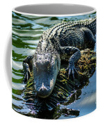 Florida Alligator Coffee Mug
