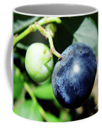 Florida - Blueberry Coffee Mug