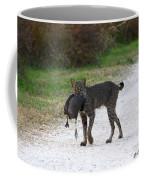 Florida Bobcat Catches An Evening Snack Coffee Mug