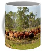 Florida Cracker Cows #1 Coffee Mug