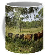 Florida Cracker Cows #3 Coffee Mug