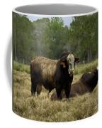 Florida Cracker Cows #4 Coffee Mug