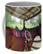 Florida Cracker Horse Coffee Mug