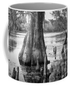 Florida Cypress, Hillsborough River, Fl In Black And White Coffee Mug