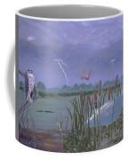Florida Everglades Thunderstorm Coffee Mug