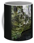 Florida Grotto Coffee Mug