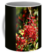 Florida Holly Berry's  Coffee Mug