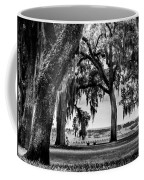 Florida Interior From Bok Gardens Coffee Mug