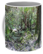 Florida Landscape - Lithia Springs Coffee Mug