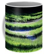 Florida Lines Of Latitude Coffee Mug