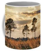 Florida Pine Landscape By H H Photography Of Florida Coffee Mug