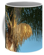 Florida Queen Palm Flower   Coffee Mug