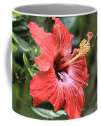 Florida Red Coffee Mug
