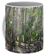 Florida Riverbank  Coffee Mug