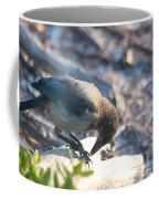 Florida Scrub Jay Breakfast Time Coffee Mug