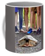 Florida Softshell Turtle 003 Coffee Mug