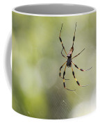 Florida Spider Coffee Mug