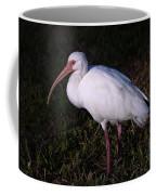 Florida White Ibis  Eudocimus Alba Coffee Mug