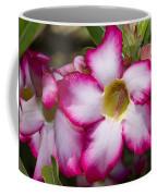 Flower 12 Pink White Yellow Coffee Mug
