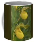 Flower 2 Of 2 As A Pair Coffee Mug