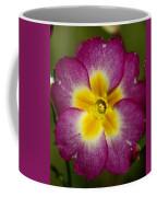 Flower 7 Coffee Mug
