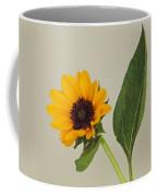 Flower 8-11 Coffee Mug