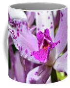 Flower Art - Intimate Orchid 4 - Sharon Cummings Coffee Mug