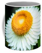Flower Blossom 3 Coffee Mug