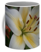 Flower Close Up 1 Coffee Mug