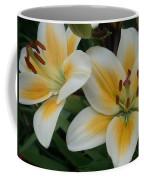 Flower Close Up 2 Coffee Mug