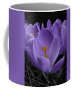 Flower Crocus Coffee Mug