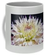 Flower Dahlia. Macro Coffee Mug