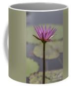 Flower In A Pond Coffee Mug