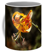 Flower Of Beauty Coffee Mug