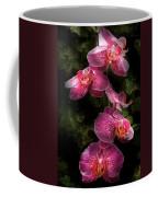 Flower - Orchid - Phalaenopsis - The Cluster Coffee Mug