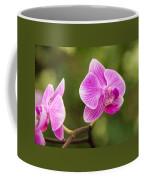 Flower - Pink Orchids Coffee Mug