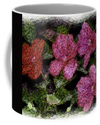 Flower Sketch Coffee Mug