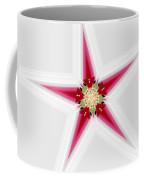 Flower Star 1 Coffee Mug