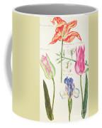 Flower Studies  Tulips And Blue Iris  Coffee Mug