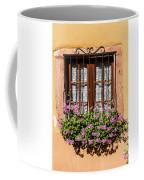 Flowered Window # II Coffee Mug