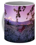 Flowering Apple Trees, Distant Barn Coffee Mug