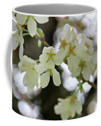 Flowering Cherry Tree 17 Coffee Mug