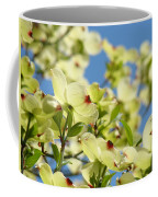 Flowering Dogwood Tree Art Print White Dogwood Flowers Blue Sky Art Coffee Mug