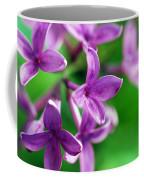 Flowering Lilac Coffee Mug