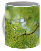 Flowering Maple Tree Coffee Mug