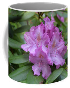 Flowering Pink Rhododendron Blossoms On A Bush Coffee Mug